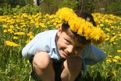 Child and Dandelions. A child in a field of dandelions stock photos
