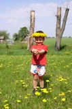 Child and Dandelions Stock Images