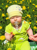 Child of dandelions Stock Images