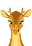 Child deer with leaf on nose Royalty Free Stock Photography
