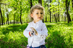 Child with dirty hands chalk Stock Image