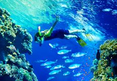 Child diver with group coral fish. Royalty Free Stock Photos
