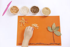 Child does applique. Children's hands are doing applique of cereals on orange cardboard Royalty Free Stock Photo