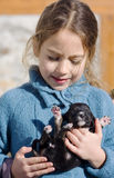 Child with dog stock images