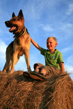 Child and dog Stock Images