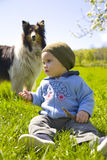 Child and dog in grass. A pet dog watches a child playing outdoors in grass Stock Photo