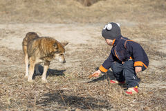Child with dog on nature in spring Stock Photo