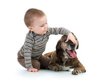 Child kid boy with dog Stock Photos