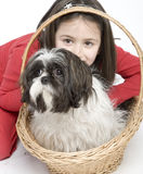 Child with dog pet Royalty Free Stock Photos
