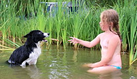 Child and dog playing Stock Photography
