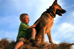 Child and dog by summer stock images