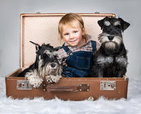 Child and dogs Royalty Free Stock Images