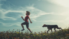 Child and a dogs. A child running down the field with flowers along with dogs. This is a 3d render illustration Royalty Free Stock Images