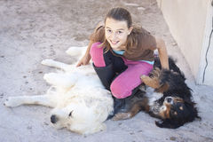 Child with dogs. A teenage girl tickling two dogs Stock Images