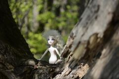 A child doll with white hair, blue eyes and no clothes left on a tree in a green forest royalty free stock photo