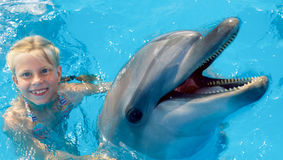 Child and dolphins in blue water. Dolphin Assisted Therapy royalty free stock photo