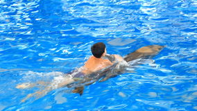 Child and dolphins. Teen boy swims with dolphin holding on to his fins stock video