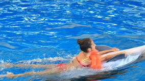 Child and dolphins. Teen girl swims with dolphin holding on to his fins stock video