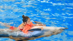 Child and dolphins. Teen girl swims with dolphin holding on to his fins stock video footage