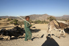 A child with a donkey, Ethiopia Royalty Free Stock Photos