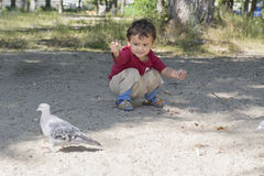 Child and the dove Stock Image