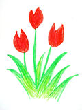 Child drawing,. Red color flowe in white background Stock Photo