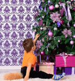 Child dressed as a fox under the Christmas tree. Small boy dressed as a fox under the Christmas tree Royalty Free Stock Photo