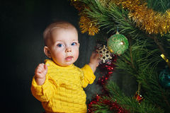 Child dresses up Christmas tree Royalty Free Stock Photo