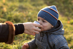Child drinks tea. In the autumn park royalty free stock photos