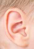 Child ear Stock Photos