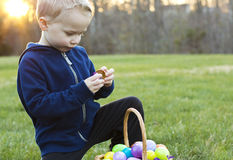 Child at an Easter Egg Hunt. Child searching for eggs at an Easter Egg Hunt on a Sunny day Royalty Free Stock Photography