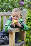 Child eating apple Royalty Free Stock Image