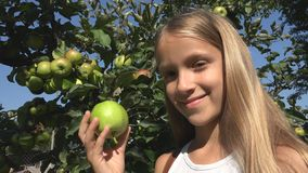 Child Eating Apple, Kid in Orchard, Farmer Girl Studying Fruits in Tree stock photo