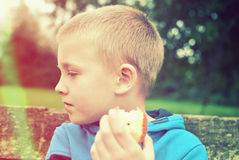 Child eating apple Stock Photography