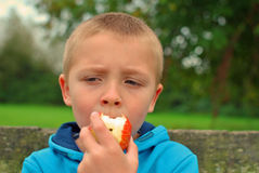 Child eating apple. Child sitting on the bench and eating apple royalty free stock photo