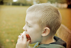 Child eating apple. Child sitting on the bench and eating apple royalty free stock photography