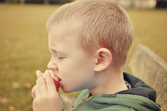 Child eating apple. Child sitting on the bench and eating apple stock photos