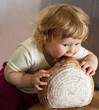 A child eating big bread. A young pretty baby girl with eating huge loaf of bread stock photography