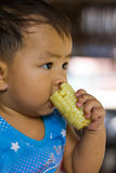 Child eating boiled corn Royalty Free Stock Image