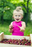 Child eating cherries royalty free stock photos