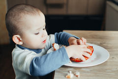 A child eating a pomegranate Royalty Free Stock Image
