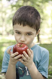 Child eating red apple. Cute child outside, eating red apple with green foliage in background Stock Image