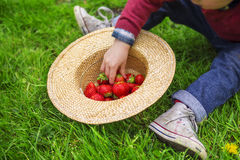 Child eating strawberries. Close up of a child eating strawberries Royalty Free Stock Images