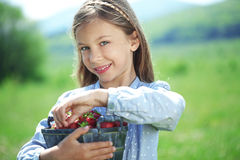 Child eating strawberries in a field Stock Photos