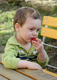 Child eating strawberry Royalty Free Stock Photos