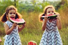 Children eating watermelon in the park. Kids eat fruit outdoors. Healthy snack for children. Little twins playing on the picnic bi. Child eating watermelon in Royalty Free Stock Photos
