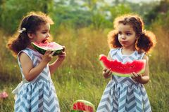 Children eating watermelon in the park. Kids eat fruit outdoors. Healthy snack for children. Little twins playing on the picnic bi stock photos