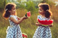 Children eating watermelon in the park. Kids eat fruit outdoors. Healthy snack for children. Little twins playing on the picnic bi stock images