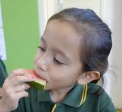 Child Eating Watermelon. Royalty Free Stock Images