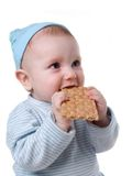 Child eats chunky cookie Royalty Free Stock Images